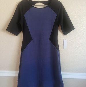 Loveepella black blue peplum size medium nwt dress